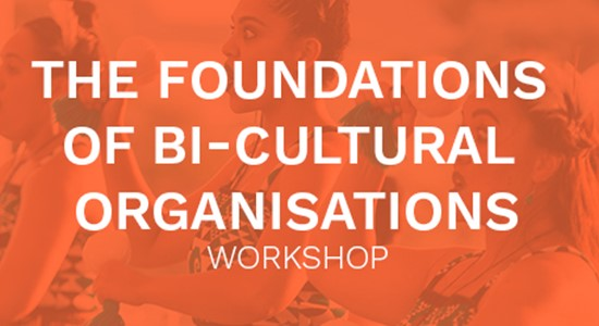 The Foundations of Bi-Cultural Organisations Workshop