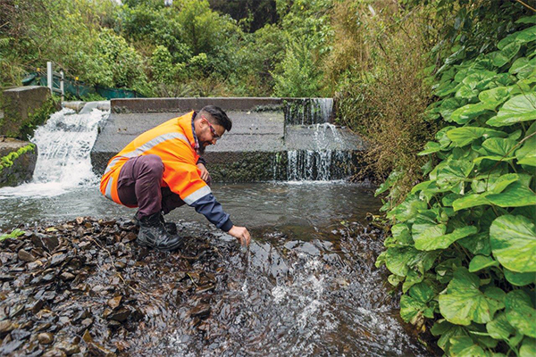 photo of citycare worker in river
